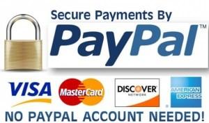paypal-02-600x353[1]
