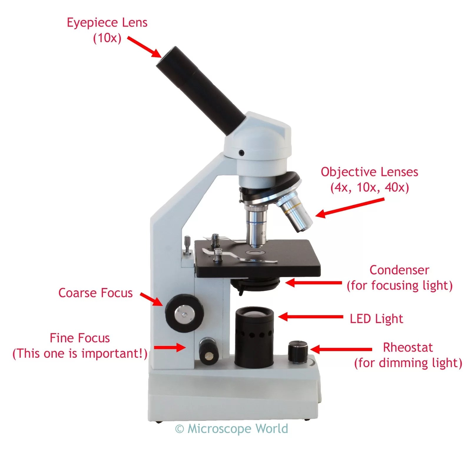 Diagrams Of A Microscope