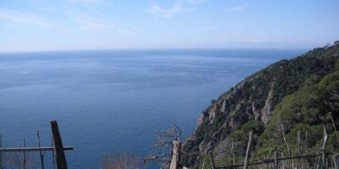 Da Molino del Gassetta a San Fruttuoso