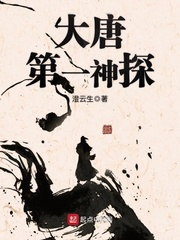 大唐第一神探, 101小說網
