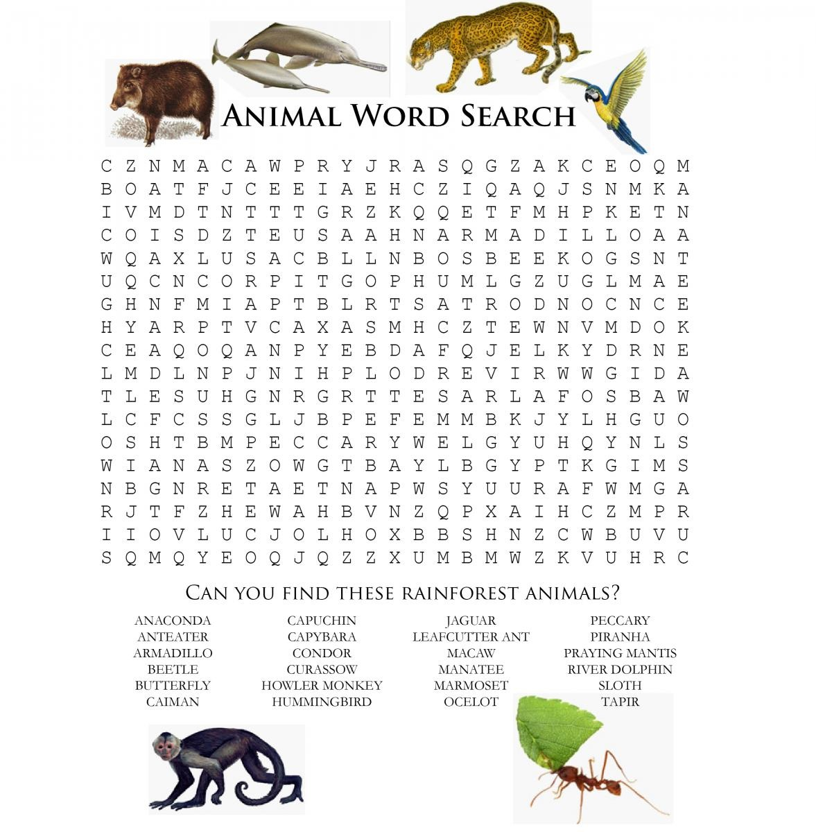 Animal Word Scramble For Kids