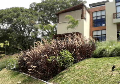 Architect-Design-Landscape-SV-1