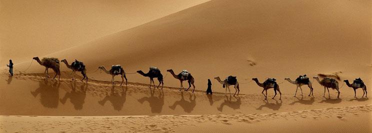 kameler5