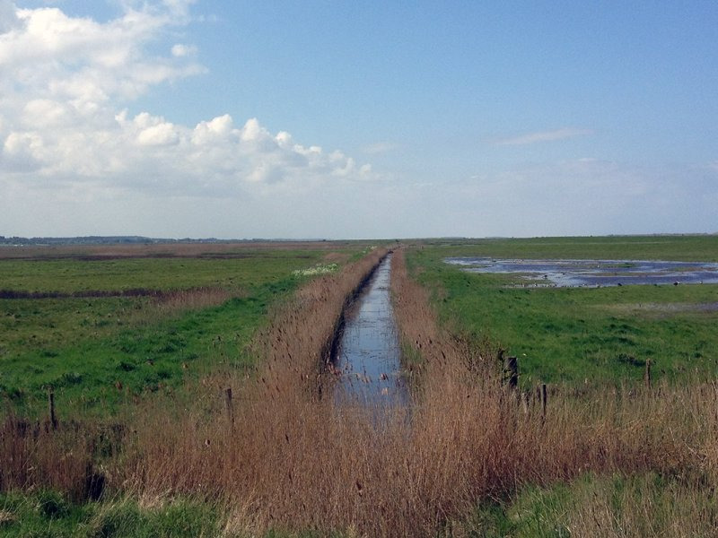 Drainage channel across the marsh, Norfolk Coast Path National Trail. Copyright Stephanie Boon, 2018. All Rights Reserved.