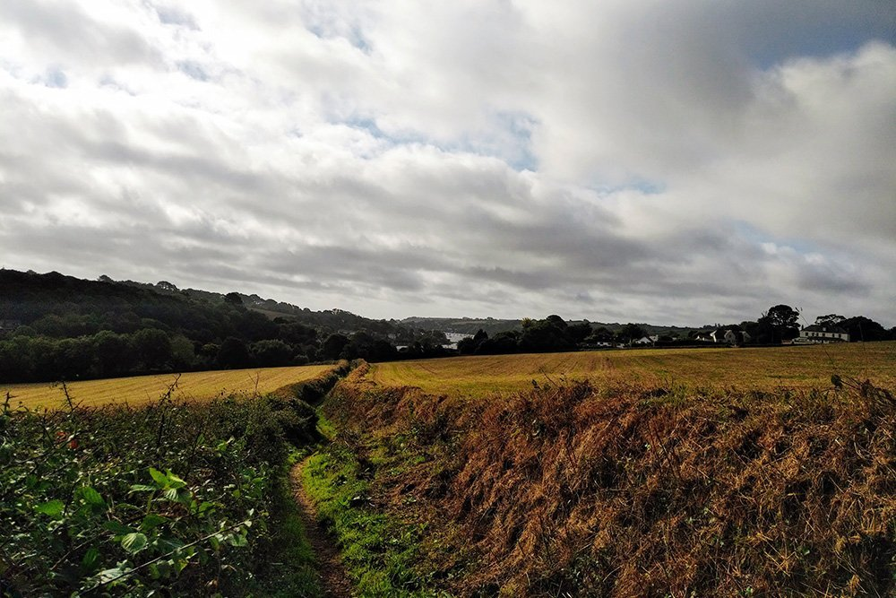 Footpath across countryside near Devoran,, Cornwall, UK. Copyright Stephanie Boon, 2018. All Rights Reserved.