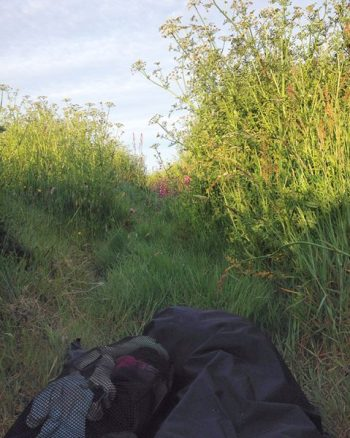 Sleeping in a bivi bag tucked beside a hedge on the South West Coast Path in Cornwall, UK. Copyright Stephanie Boon, 2017