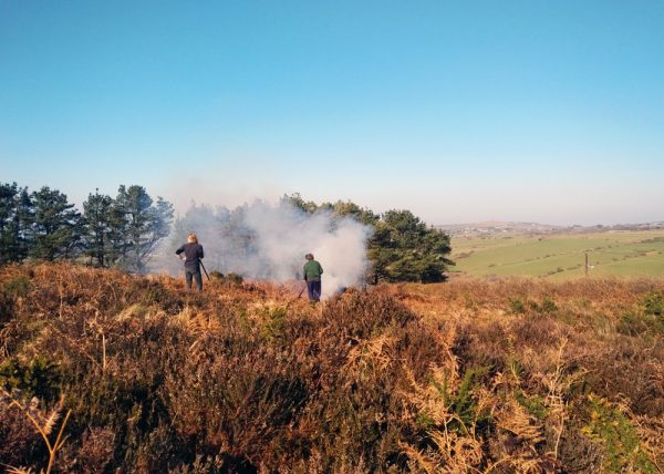 30 Days Wild: 2 volunteers in the distance in front of billowing smoke, with heather in the foreground.