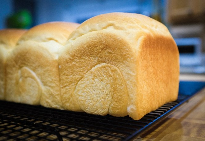 """Fresh Bread"" Cedar Park, 2017"