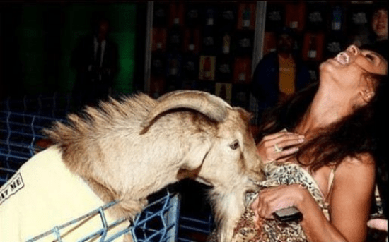 hot-girls-goats-0026