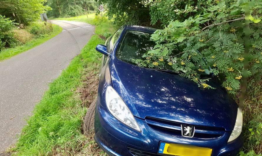 Automobilist raakt van de weg in Tubbergen