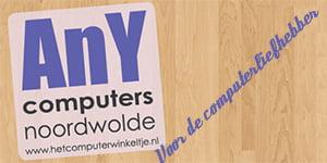 Anycomputers (300x150)