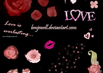 Romance Rose Flowers