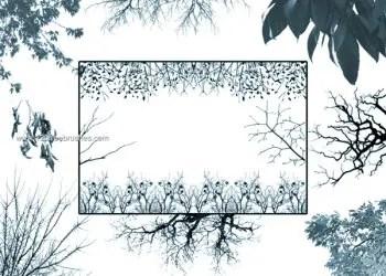 Tree Borders