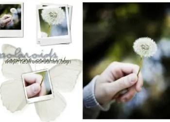 Polaroid Photo Frames 8