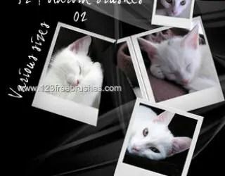 Polaroid Frames Set 3