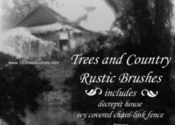 Trees – Country Rustic
