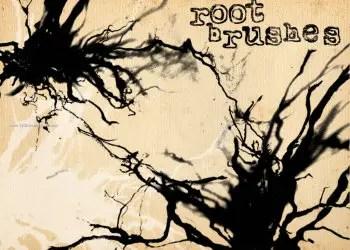 Root Grunge