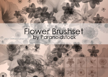 Elegant Photoshop Brushes