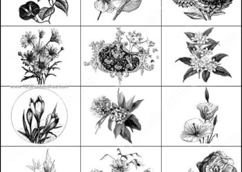 Floral Ornaments Brushes Photoshop Free