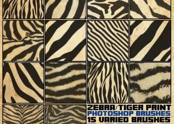 Zebra and Tiger Print