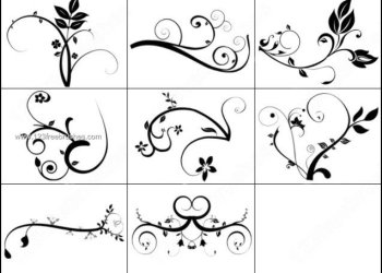 Decorative Swirls Photoshop Brushes
