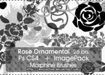 Rose Ornamental