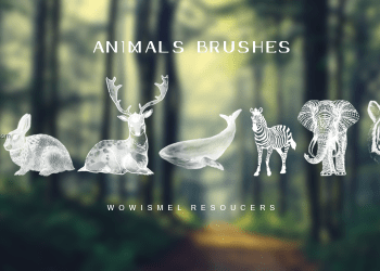 Elephant – Tiger – Zebra – Deer – Rabbit – Crane