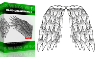 Hand Drawn Wings Set.1 | Vol : 6