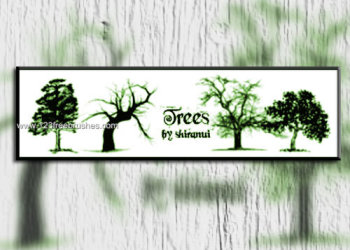 Free Brushes Tree Photoshop