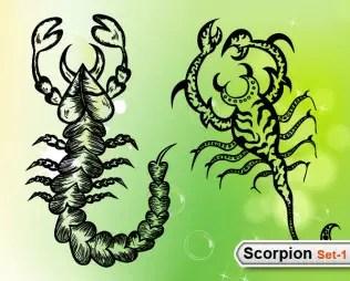 Scorpions Vector -