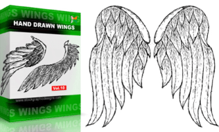 Hand Drawn Wings Set.1 | Vol : 10
