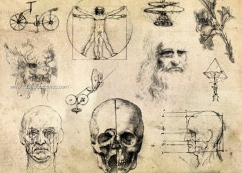 Da Vinci Body Sketches