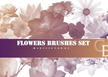 Flower Brushes Deviantart