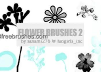 Flower Brushes Download