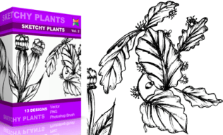 Vol.2 : Sketchy Plants