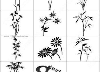 Photoshop Brushes Free Flowers