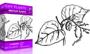 Vol.3 : Sketchy Plants