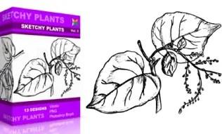 Vol.3 : Sketchy Plants