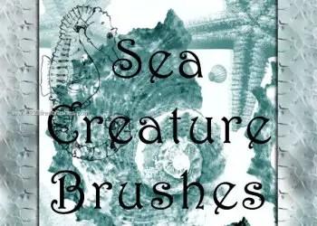 Aquatic Photoshop Brushes – Starfish – Octopus – Snail
