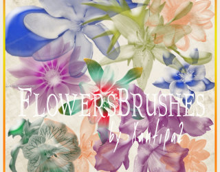 Flower Brushes Photoshop Elements 9