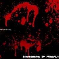 Blood 24