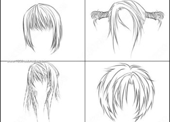 Anime Hair Brushes