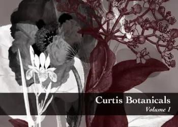 Botanical plants