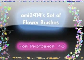 Natural Flower Brushes
