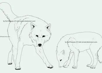 Wolf Line Arts