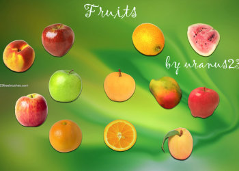 Apple – Papaya – Mango – Watermelon and Orange Fruits