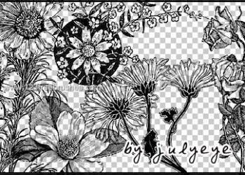 Flower Brushes For Photoshop Cs4