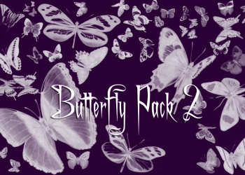 Butterfly Pack 2