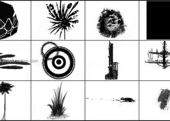 Palm Tree – Circle – Transformer Brushes