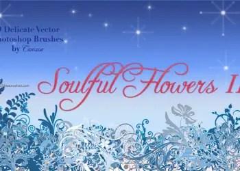 Flower Brushes Photoshop Cs5